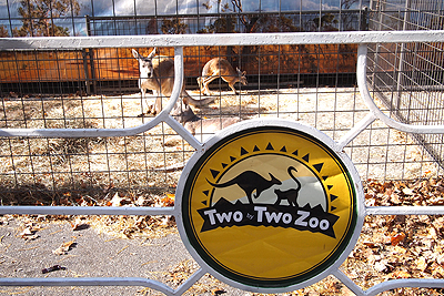 11nysswf_zoo_large